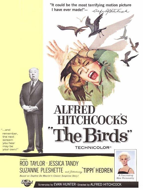 1963 Les Oiseaux