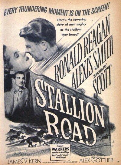 1947 Stallion Road