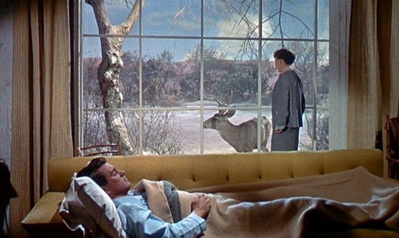 Tout ce que le ciel permet (All the heaven allows) – de Douglas Sirk - 1955 dans 1950-1959 tout-ce-que-le-ciel-permet